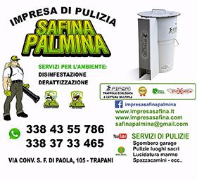 Safina Palmina1 web